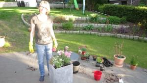 Blumenkübel Bepflanzung